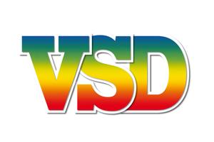LOGO-VSD